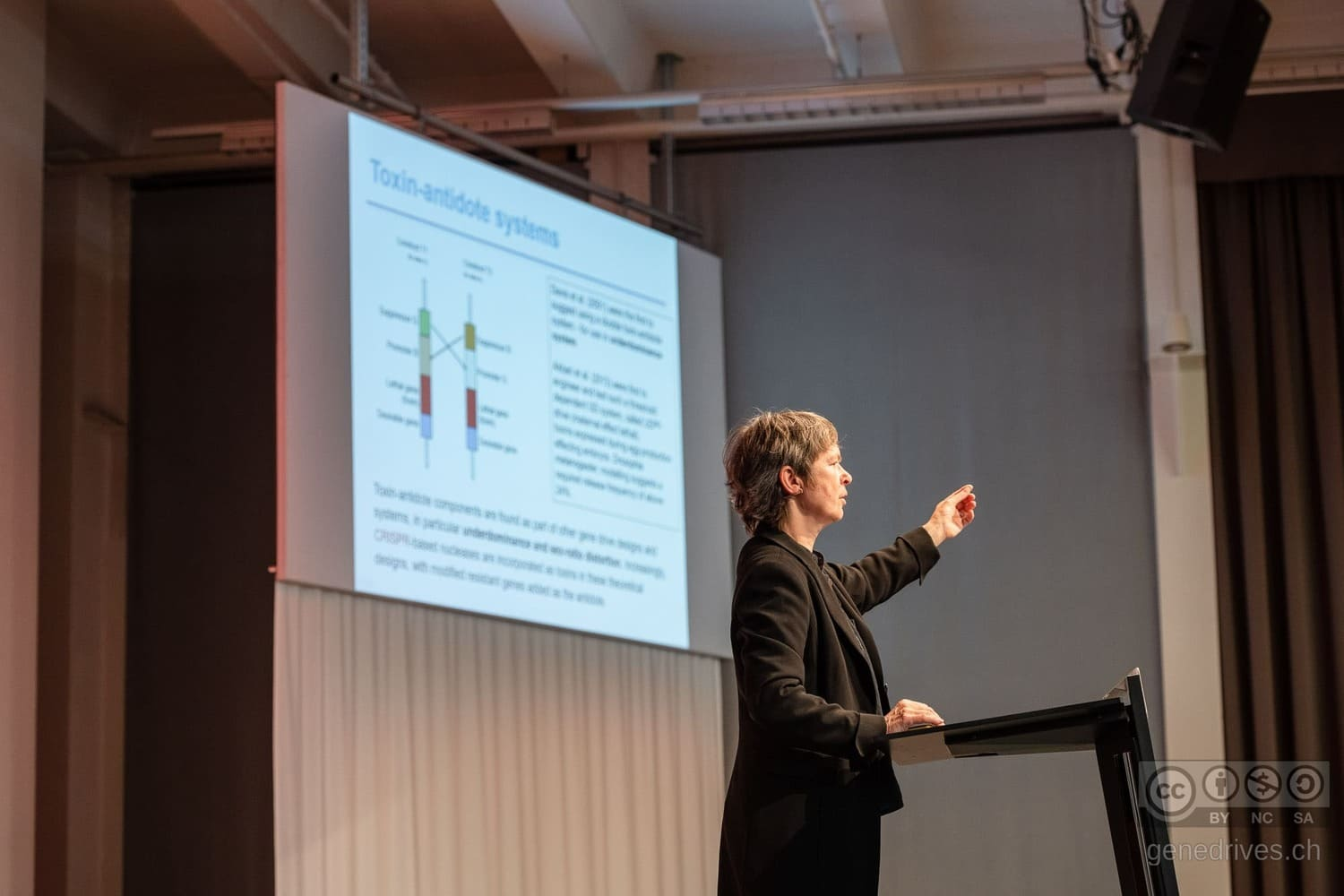 Ricarda Steinbrecher speaks about the techniques of GeneDrive at the Symposium 2019.